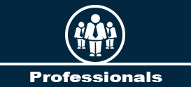 Experienced Professionals Button - Commercial Litigator